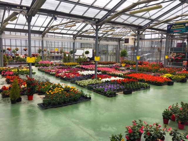 magasin florales à Sées – C'Fleurs
